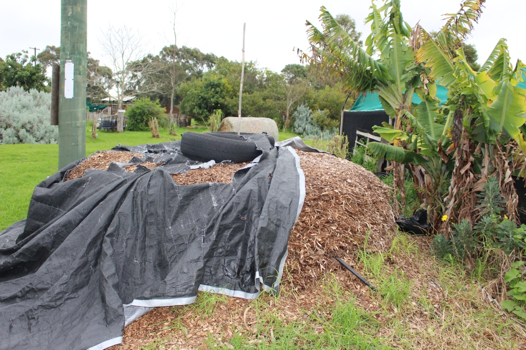 This compost heap warms water for an outside shower